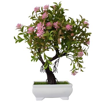 Imagen de BONSAI TIPO BASE CERAMICA RECTANGULAR